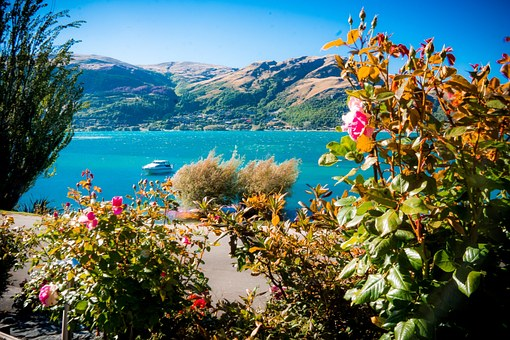 Top 8 Places To Visit In New Zealand